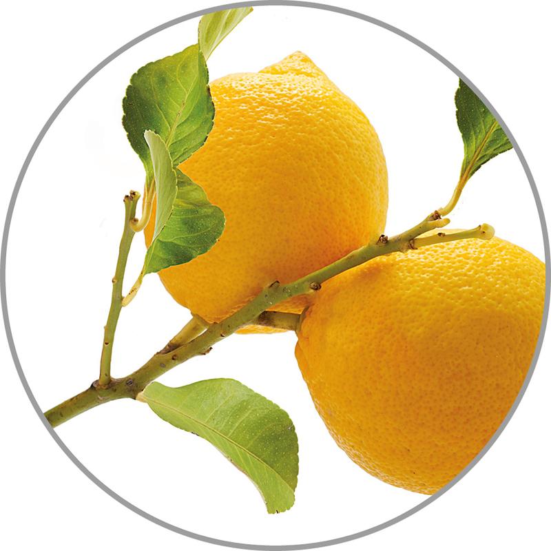 Medisana Vonná esence do aroma difuzérů - citron