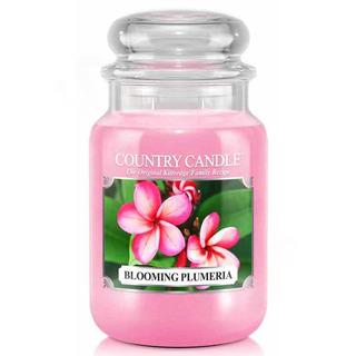 Country Candle Velká vonná svíčka ve skle Blooming Plumeria 652g