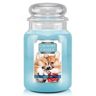 Country Candle Velká vonná svíčka ve skle Fresh Air Puppy 652g