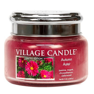 Village Candle Malá vonná svíčka ve skle Autumn Aster 262g - Podzimní hvězdnice